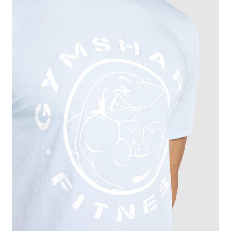 Legacy_SS_T-Shirt_Chalk_Blue_D2-Edit_HK_1440x (1)