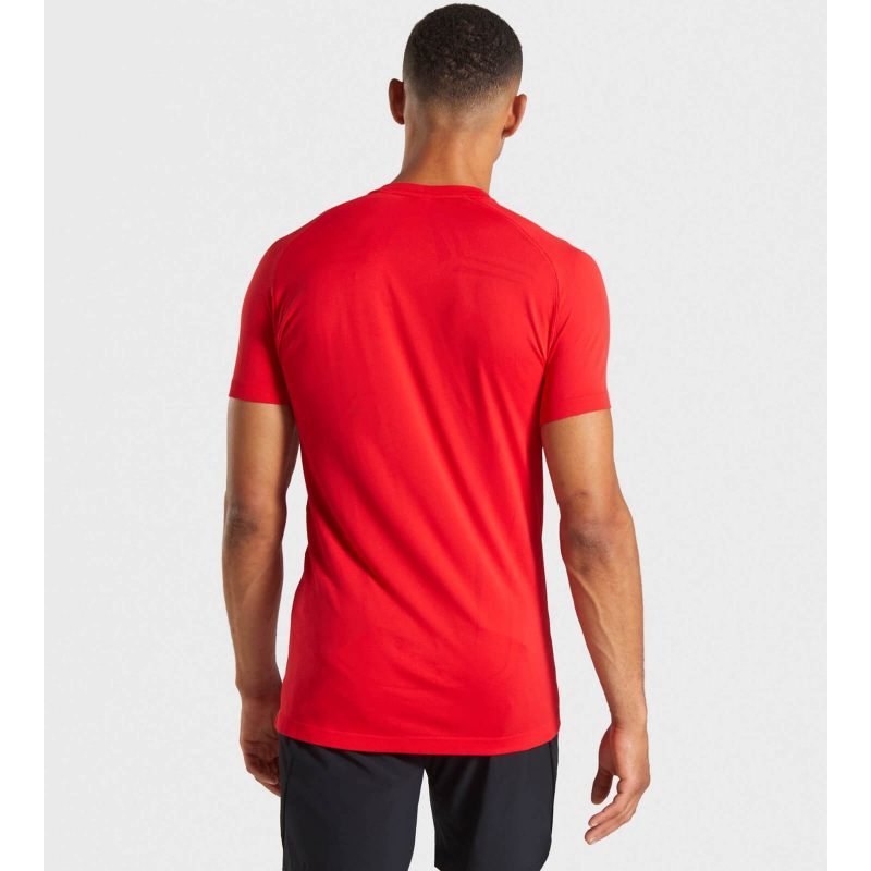 Lightweight_Seamless_SS_T-Shirt_-_Chilli_Red_B-EditEdit_DW_f85e5dde-4ae9-4b13-ac29-8c7b871acb33_1440x (1)