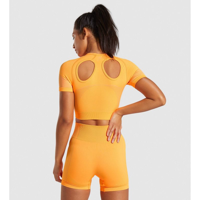 Ultra_Seamless_Crop_Top_Neon_Orange_B-Edit_ZH_b5606bcc-d9ba-45c3-870a-0d97f5cf85b9_1440x (1)