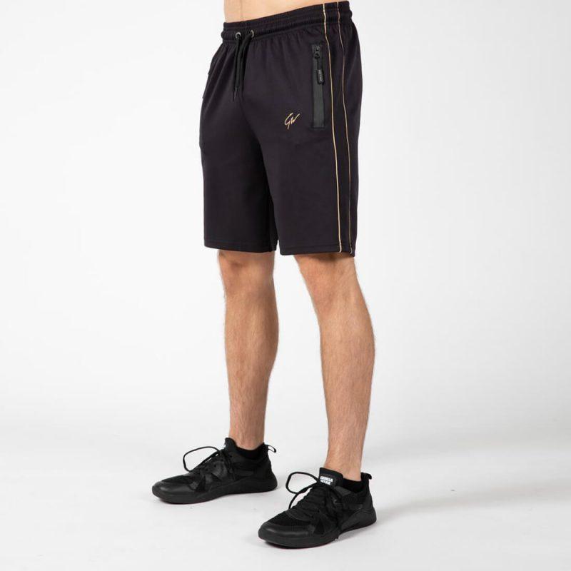 gorila-01_0002_gorilla-wear-wenden-shorts-black-gold-11_1024x1024.jpg